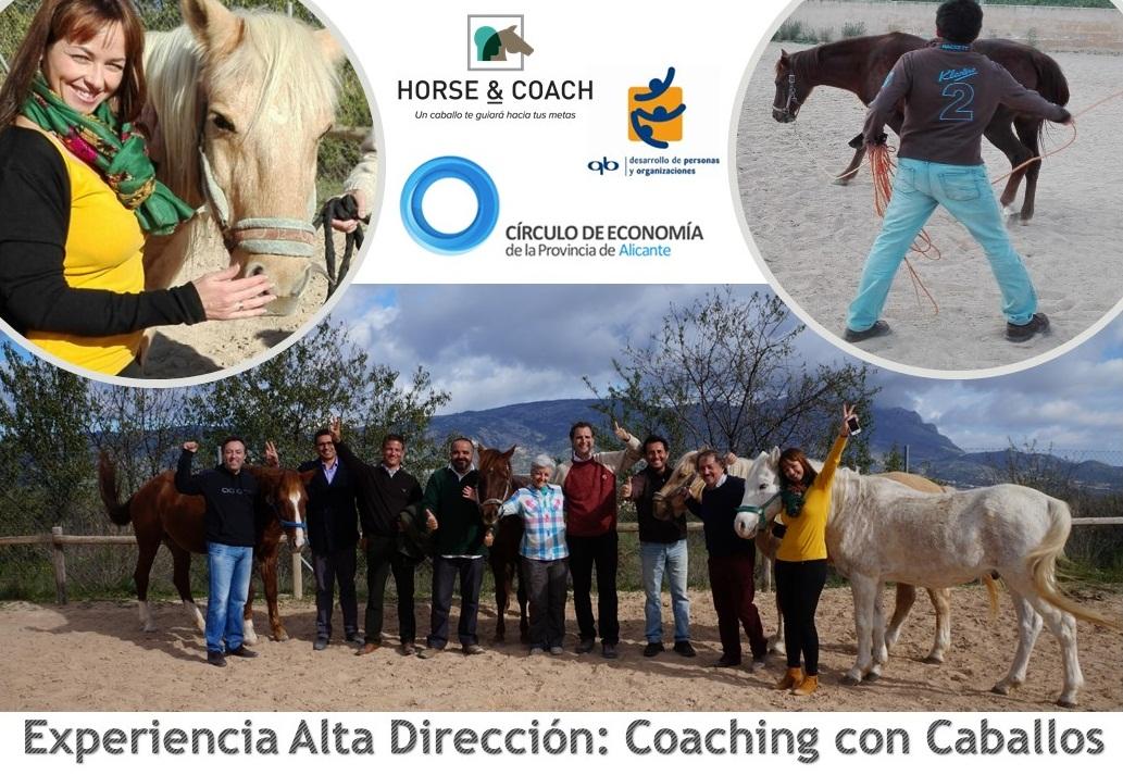 Experiencia de Alta Dirección para socios del Círculo de Economía: Coaching con Caballos